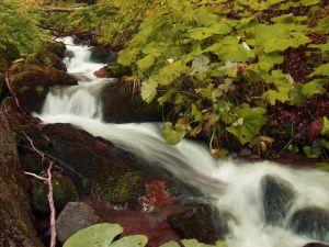 waterfall-1219159-m